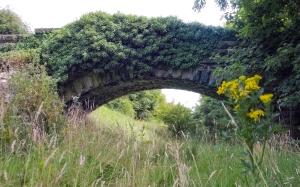 Abandoned_Railway_Cutting_in_Otley